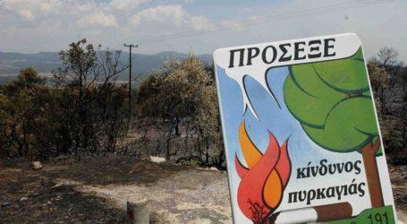Πολύ υψηλός κίνδυνος πυρκαγιάς σε νησιά Ανατολικού Αιγαίου, Δωδεκάνησα και Λασίθι