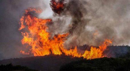 Τριάντα έξι πυρκαγιές σήμερα στην επικράτεια