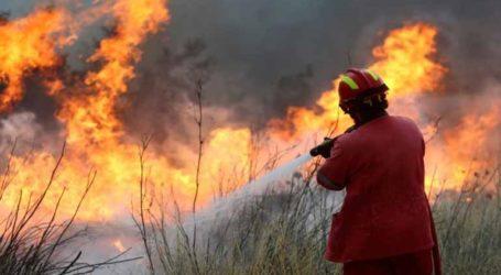 Υπό μερικό έλεγχο οι φωτιές στον Λούβρο και στο Ανεμοχώρι
