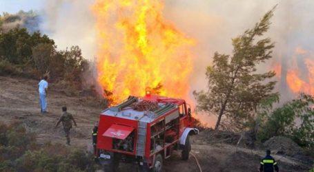 Πυρκαγιά σε αχυρόμπαλες κοντά σε εγκατάσταση ζωϊκού κεφαλαίου στο Καλοχώρι