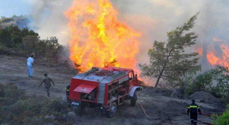 Πυρκαγιά ξέσπασε σε δάσος της Κεφαλονιάς, κοντά στο αεροδρόμιο