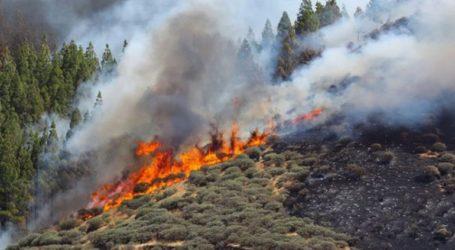 Μεγάλη πυρκαγιά στο νησί Γκραν Κανάρια