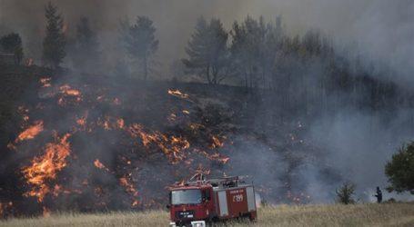 Υπό πλήρη έλεγχο η πυρκαγιά στην Ζάκυνθο