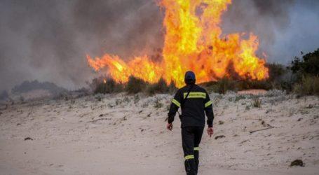 Σε ύφεση οι φωτιές στην Αχαΐα, εξακολουθούν να επιχειρούν ισχυρές δυνάμεις της πυροσβεστικής