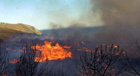 Μέτωπα πυρκαγιάς σε Μεσσηνία και Άρτα