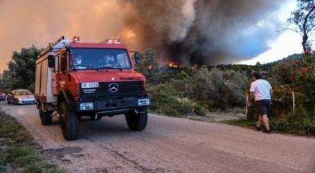 Μεγάλη φωτιά στα Ψαχνά Ευβοίας