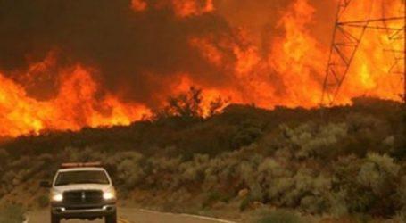 Πυρκαγιά μαίνεται σε δάσος της Θάσου