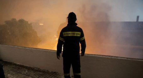Το μέτωπο της φωτιάς στην Εύβοια, επισκέφθηκε κλιμάκιο του ΚΚΕ
