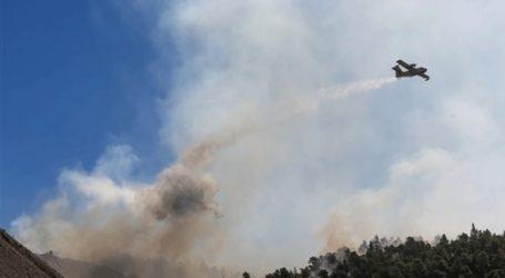 Στο μέτωπο του χωριού Πλατάνα εστιάζουν τις προσπάθειες οι πυροσβεστικές δυνάμεις