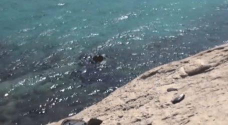Νεκρός τουρίστας σε τροχαίο με «γουρούνα»