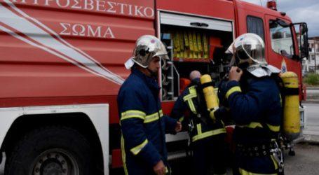 Υπό έλεγχο η πυρκαγιά στην επαρχιακή οδό Θεσσαλονίκης-Ν. Μηχανιώνας