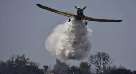 Φωτιά σε ελατόδασος της Φθιώτιδας από κεραυνό