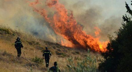 Πυρκαγιά σε εξέλιξη στις Ερυθρές