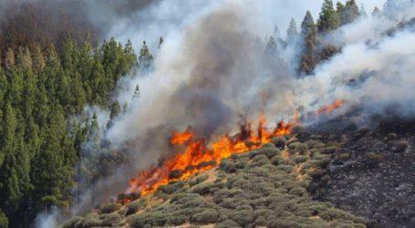 Νέα πυρκαγιά στο νησί Γκραν Κανάρια