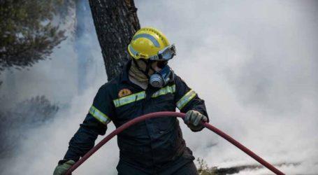 Υψηλός κίνδυνος για πυρκαγιά στα νησιά και την Κυριακή