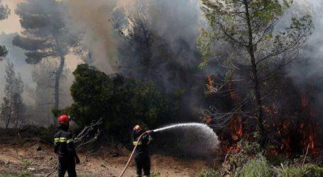 Σε ύφεση η πυρκαγιά στην περιοχή της Παλιάς Περίθειας