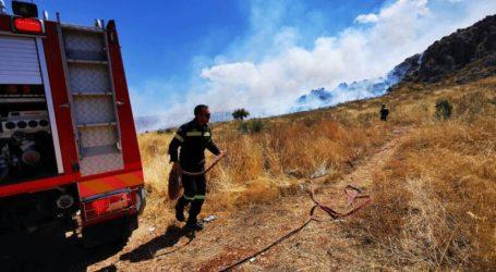 Ρέθυμνο: Πυρκαγιά στον Άγιο Βασίλειο