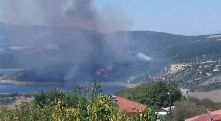 Κοζάνη: Φωτιά στην Ελάτη