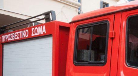 Υπό έλεγχο οι πυρκαγιές σε Πάργα και Ιωάννινα