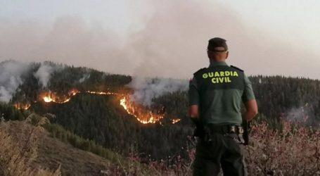 """Σε """"περιβαλλοντική τραγωδία"""" εξελίσσεται η φωτιά στο Γκραν Κανάρια"""