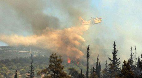 Φωτιά σε δασική έκταση στην Κεφαλονιά