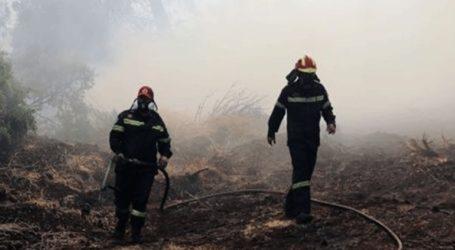 Πυρκαγιά στην Κορώνη Πάργας