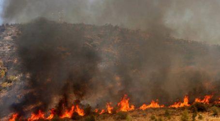 Φωτιά στον Κίσσαμο Χανίων, κοντά στο Ελαφονήσι