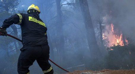 Πυρκαγιά στη Σαμοθράκη – Σε εξέλιξη πυροσβεστική επιχείρηση