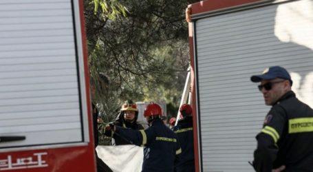 Εκδηλώθηκαν 24 δασικές πυρκαγιές το τελευταίο 24ωρο