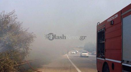 Πυρκαγιά σε παράνομη χωματερή στα Χανιά