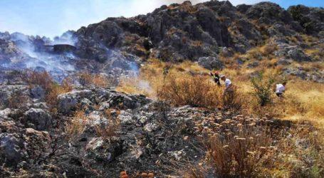 Πυρκαγιά στα Πυργιώτικα Ναυπλίου – Σε εξέλιξη πυροσβεστική επιχείρηση