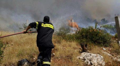 Σε εξέλιξη πυρκαγιά στα Βασιλικά Σαλαμίνας