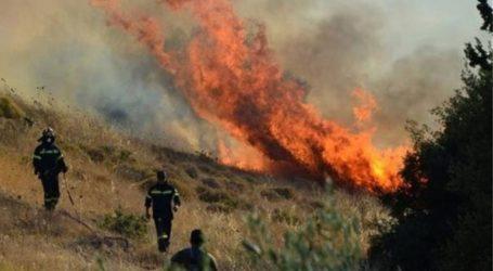Σε εξέλιξη πυρκαγιές στη Ριόλου Αχαϊας και στη Βάρδα Ηλείας