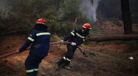 Πυρκαγιά στην Φλώρινα