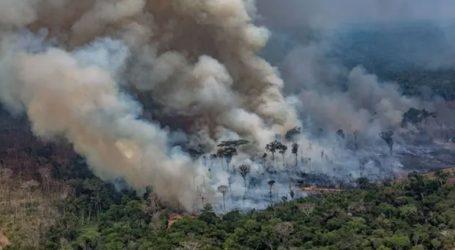 Οι αρχές αναλαμβάνουν δράση για να αντιμετωπίσουν τις πυρκαγιές στον Αμαζόνιο