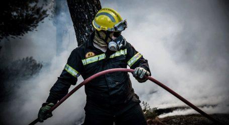 Σε εξέλιξη πυρκαγιά σε αγροτοδασική έκταση στο Πεταλίδι Μεσσηνίας