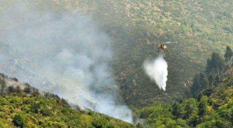 Εκδηλώθηκαν 55 δασικές πυρκαγιές το τελευταίο 24ωρο