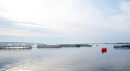 H Δανία περιορίζει τις υδατοκαλλιέργειες με στόχο την προστασία του περιβάλλοντος