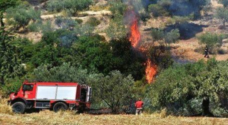 Πολύ υψηλός ο κίνδυνος πυρκαγιάς για αύριο Τετάρτη
