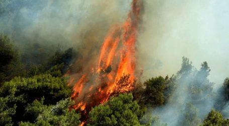 Φωτιά στη νότια Κέρκυρα – Εκκενώθηκαν δύο χωριά