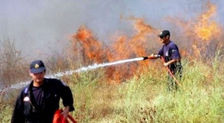 Φωτιά σε ξερά χόρτα στα Τουρκοβούνια