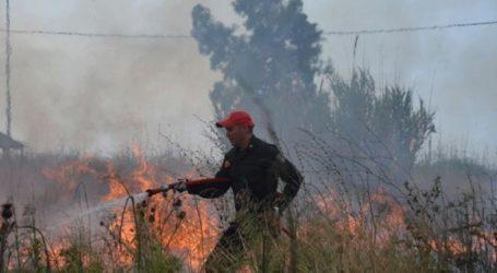Εκδηλώθηκαν 46 δασικές πυρκαγιές το τελευταίο 24ωρο