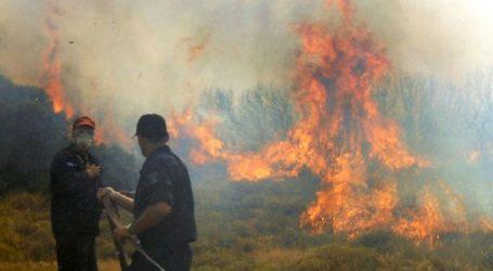 Πυρκαγιά στην Αρτέμιδα – Σε εξέλιξη μεγάλη πυροσβεστική επιχείρηση