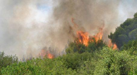 Πολύ υψηλός ο κίνδυνος εκδήλωσης πυρκαγιάς σήμερα