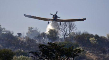 Πυρκαγιά σε δάσος της Αρχαίας Ολυμπίας