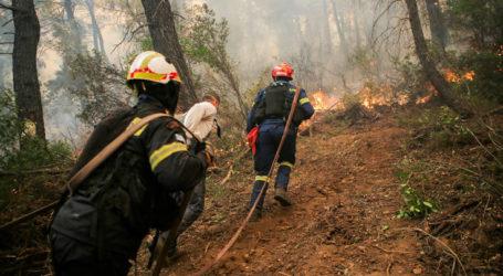 Υψηλός και σήμερα ο κίνδυνος πυρκαγιάς σε περιοχές της Μαγνησίας [χάρτης]