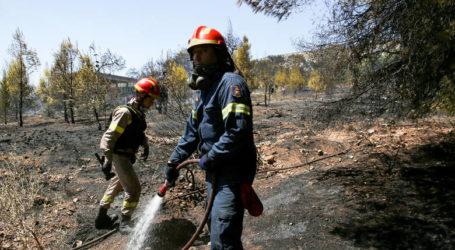 Υψηλός ο κίνδυνος πυρκαγιάς σήμερα στη Μαγνησία