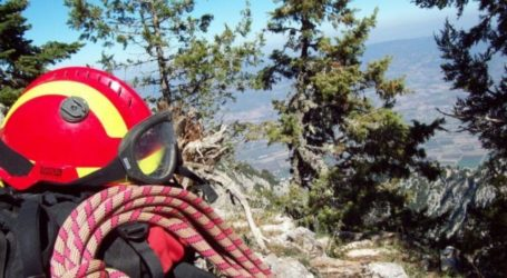 Χάθηκε στο δάσος 40χρονος στην Κερασιά Μαγνησίας