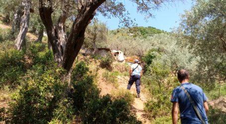 Αγνοείται 60χρονος βοσκός στο Πήλιο – Μεγάλη επιχείρηση εντοπισμού