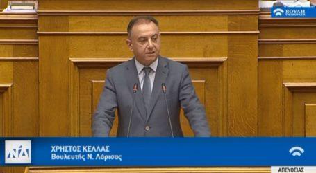 Κέλλας: «Επιτελικό κράτος για μια ισχυρή Ελλάδα»